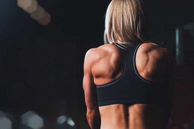 Plany treningowe i dietetyczne